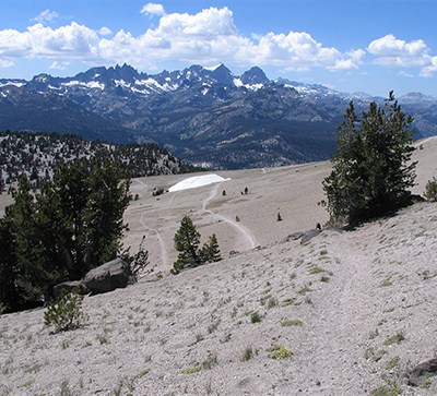 Mammoth Mountain Trail