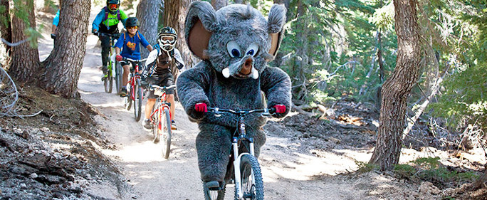 Woolly's Summer Saturday Bike Ride @ Main Lodge | Mammoth Lakes | California | United States