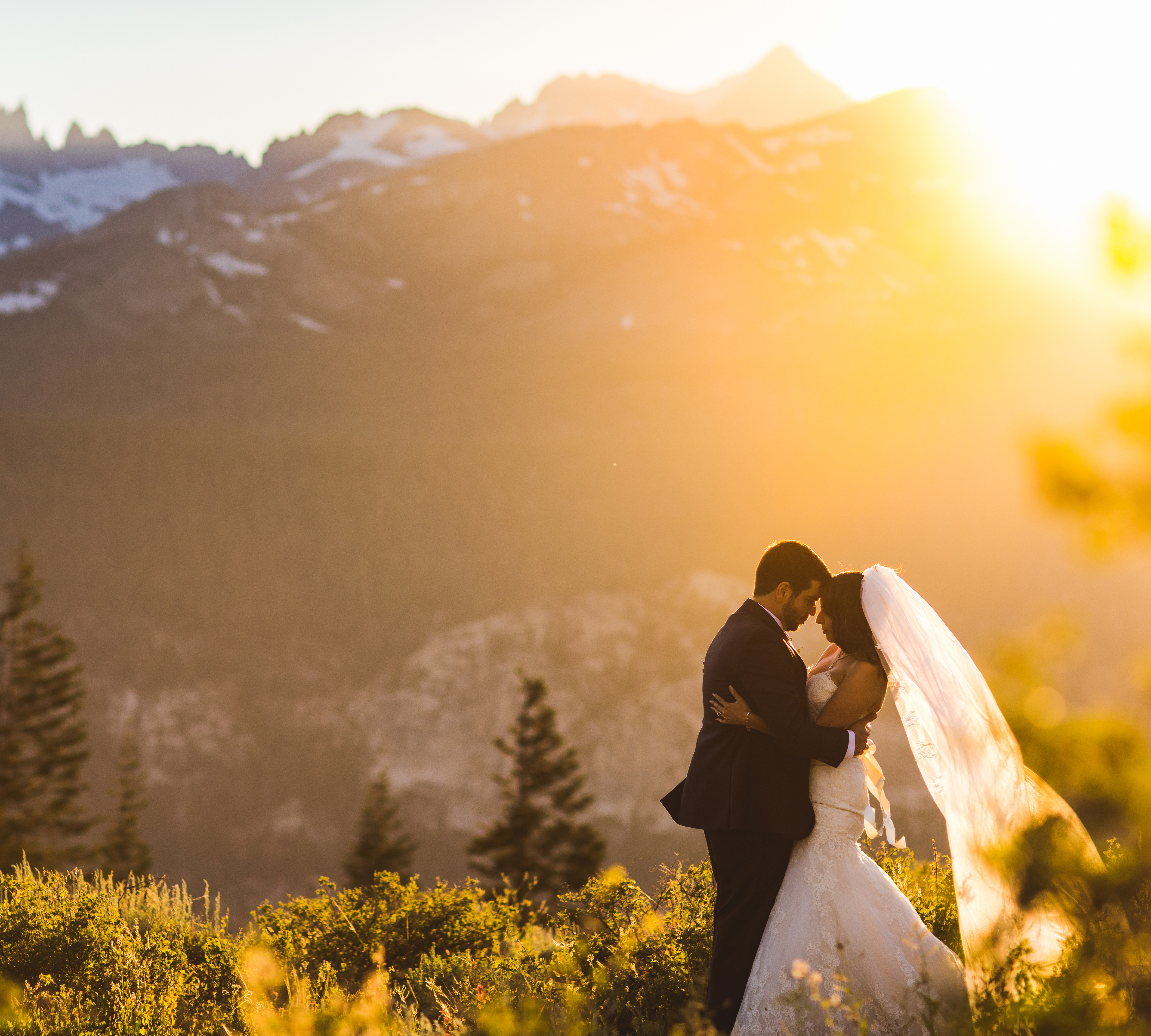 Get Married In Mammoth
